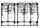 キャッスル綱場 - 所在階 の間取り図